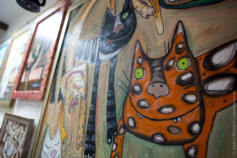 Музей Кошки экспонаты выставка экскурсия